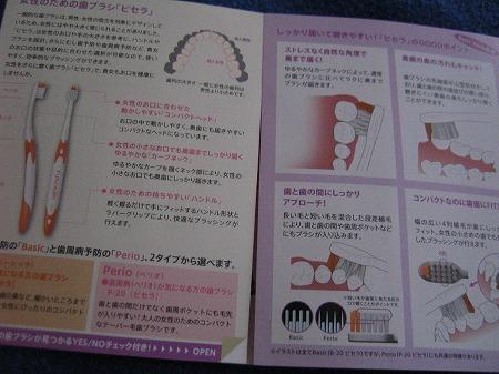 ピンクは歯周病予防に