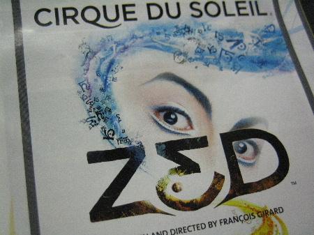 ゼッドは、常設劇場「シルク・ドゥ・ソレイユ シアター東京」でしか見れない
