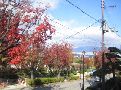 函館の坂道の紅葉