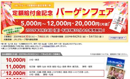 JAL 定額給付金記念バーゲンフェア